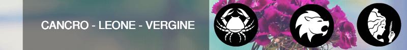 cancro-leone-vergine